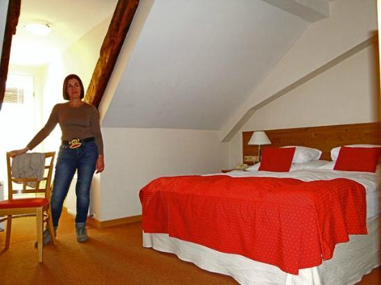 Rott Hotel: Habitación 421