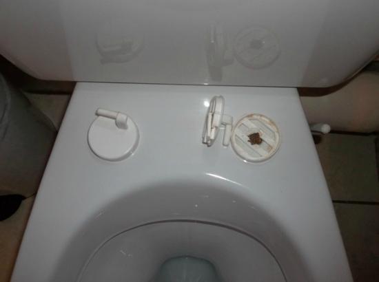 Sejours & Affaires Rive Gauche - Serris: Broken toilet seat