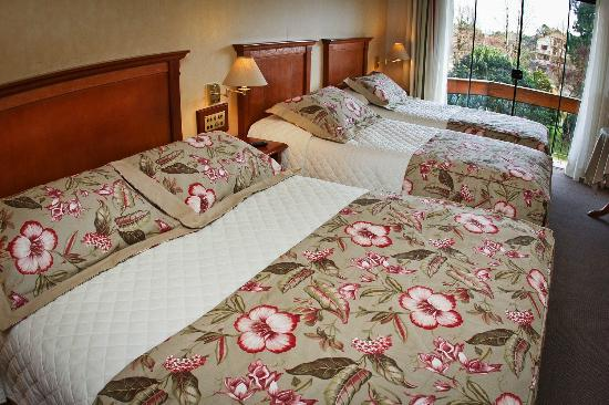Hotel Alpestre : Apto. Luxo Superior
