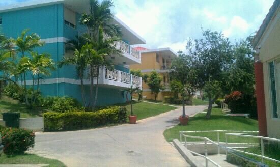 Sea Breeze Hotel: Me encanto el sitio :-)