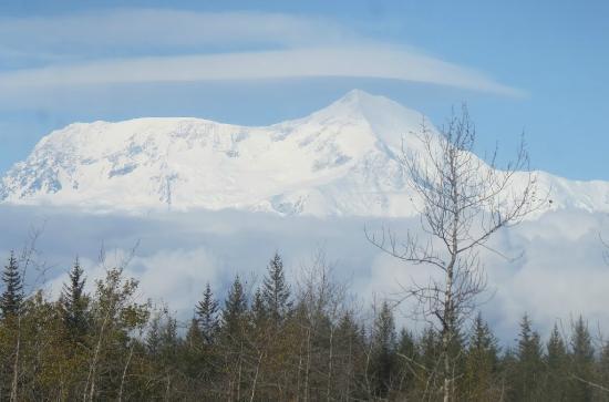 Icy Bay Lodge: Mt. Alias