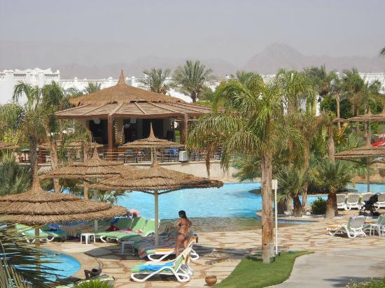 نادي سونستا شرم الشيخ - خليج نعمة: Tropical Bar 