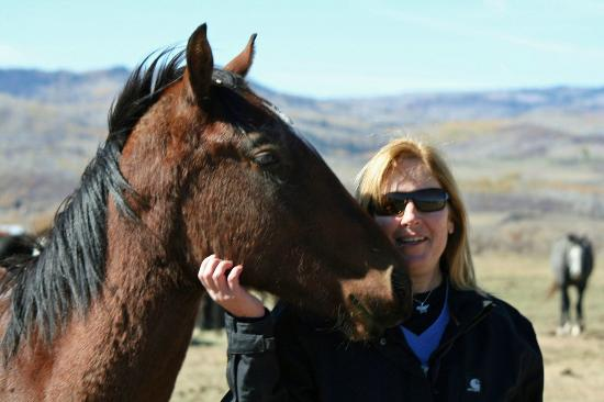 The Home Ranch: Friendly horses