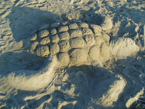 Frangokastello Beach: Sand 'turtle'