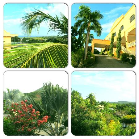 The Fajardo Inn: Variety of shots around the property.