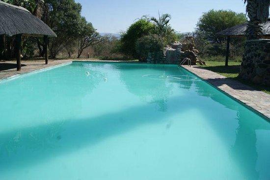 Cheetah Inn: Swimmingpool
