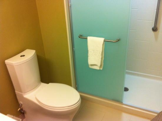 Home2 Suites by Hilton Charlotte I-77 South: walk-in shower