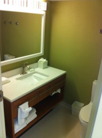 Home2 Suites by Hilton Charlotte I-77 South: bathroom sink