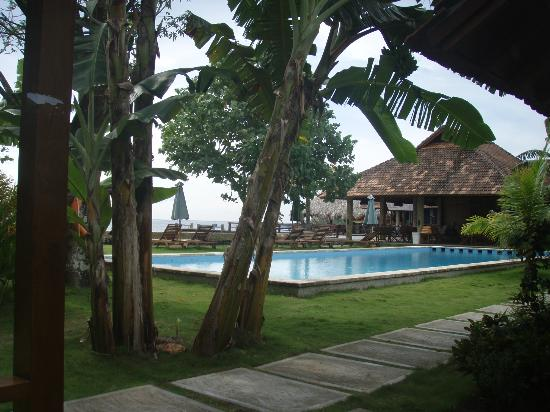 Cocotinos Manado: piscine