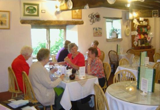 Old Dairy Tearoom: Visitors enjoying their lunch