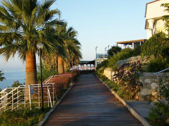 Palm Wings Beach Resort: walkway to snack bar