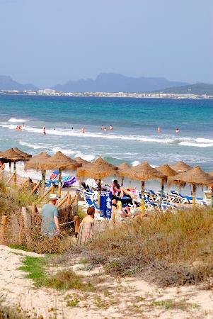 Hotel Viva Bahia: Bucht von Alcudia