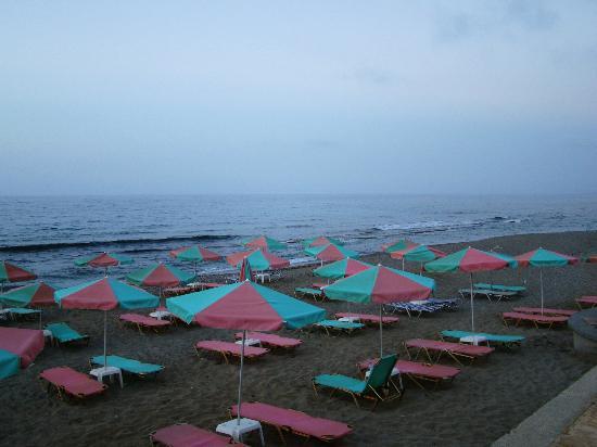 Seafront Apartments : Участок пляжа