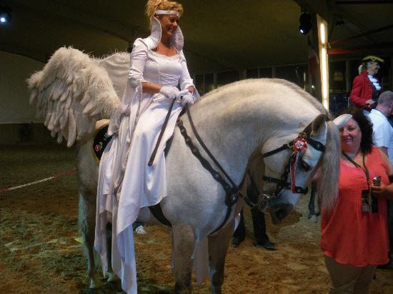 Hotel Club Sur Menorca: Angel horse