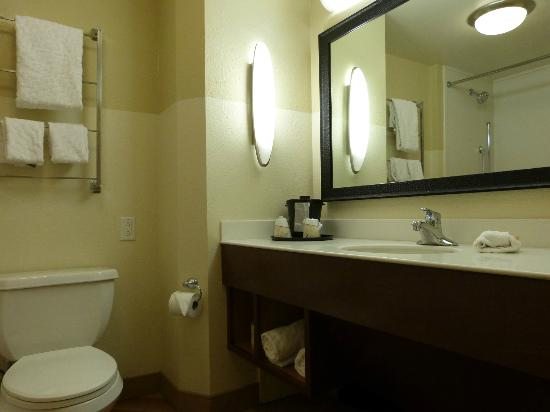 La Quinta Inn & Suites New Orleans Downtown: bathroom