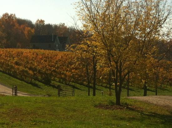 Niagara Wine Trail USA