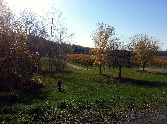 Niagara Wine Trail: View of Arrowhead Springs