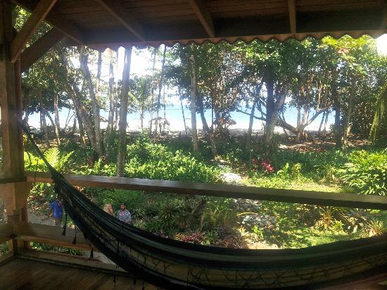 Hotel Banana Azul : beach view from Howler balcony