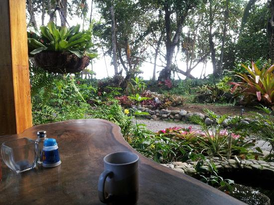Hotel Banana Azul: your view at breakfast