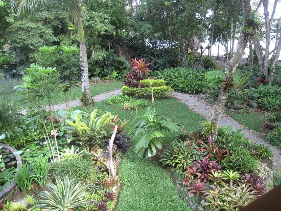 Hotel Banana Azul: grounds/lily pond from balcony