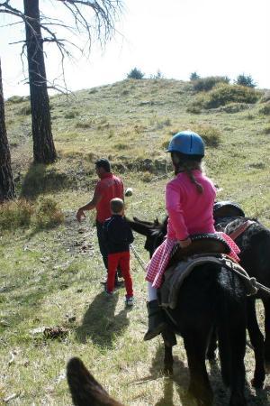 Etna Donkey Trekking: ezelman en zijn assistent