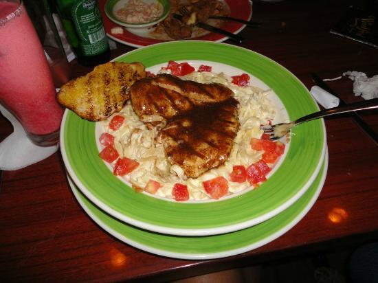 alferdo pasta n grilled jerk chicken @ woodford cafe