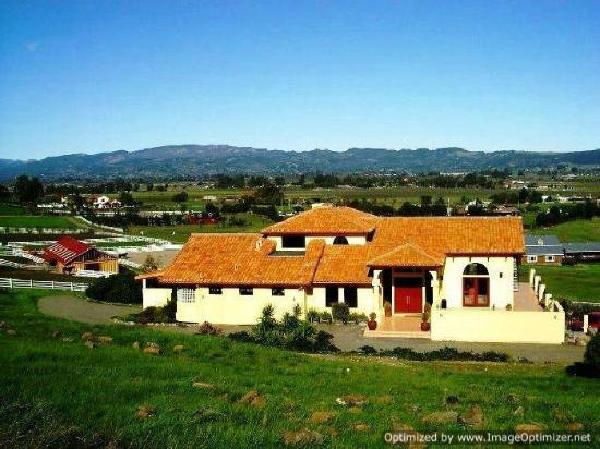 Black Sterling Villa and Vineyard Estate : front