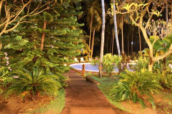 Eva Lanka Hotel: Бассейн вечером