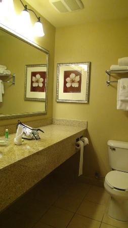 Country Inn & Suites by Radisson, Gillette, WY : Lovely Bathroom with a great shower