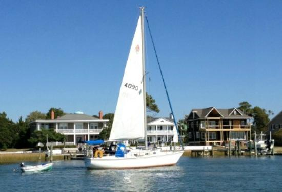 Waterbug Tours: Lots of boaters out on the water.