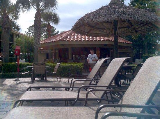 Doubletree by Hilton Orlando at SeaWorld:                   Main pool bar
