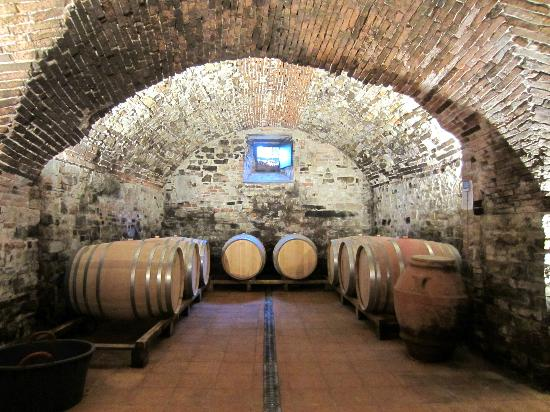 Tuscan Wine Tours with Angie: Cellar