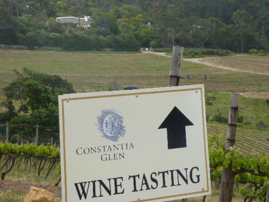Constantia Glen Winery : Wine tasting