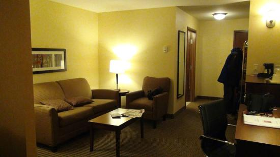 Comfort Suites Hotel & Convention Center Rapid City: the lounge area