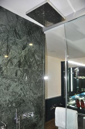 Hotel Reina Petronila: ducha