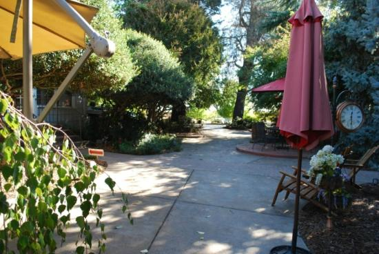 Macchia Wines: Many inviting shade covered patios and seating areas around the tasting room.