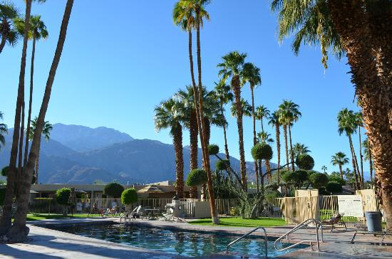 Desert Isle of Palm Springs: The big pool area