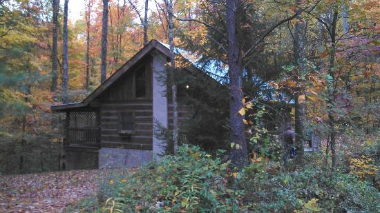 Cabins in the Pines: Outside of Cabin