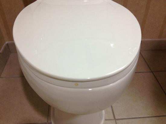 Hampton Inn Orlando International Airport: Dirty toilet