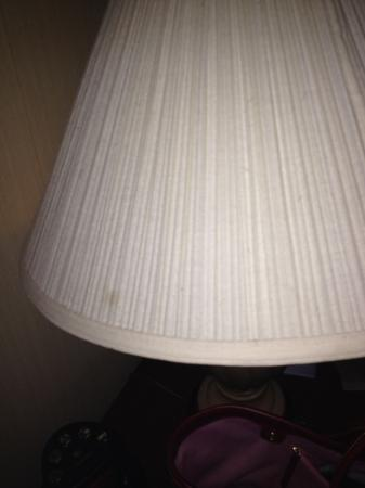 DoubleTree Suites by Hilton Hotel Nashville Airport: lamp yuck