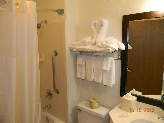 Quality Inn & Suites Denver International Airport: Towels folded to look like swans