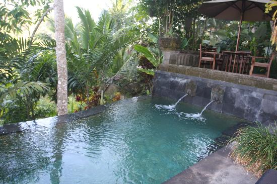 Bidadari Private Villas & Retreat - Ubud: Quite Clean and Quite big swimming pool
