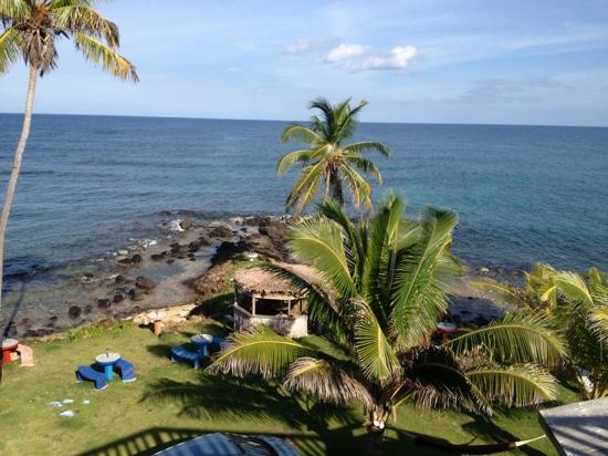 Mama Lola's: Your view while enjoying a meal
