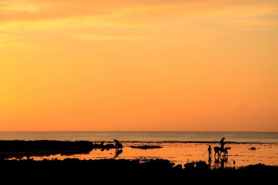 Deep Blue Diving: Eua sunset