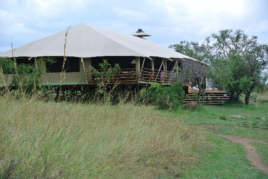 Serengeti Bushtops Camp : The dining tent.