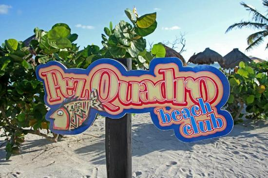 Pez Quadro at 40 Cannons: The Pez Quadro Beach Club Sign