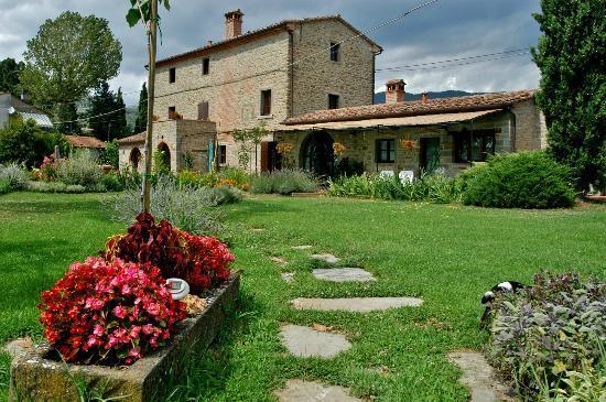 Azienda Fontelunga: il moro novo
