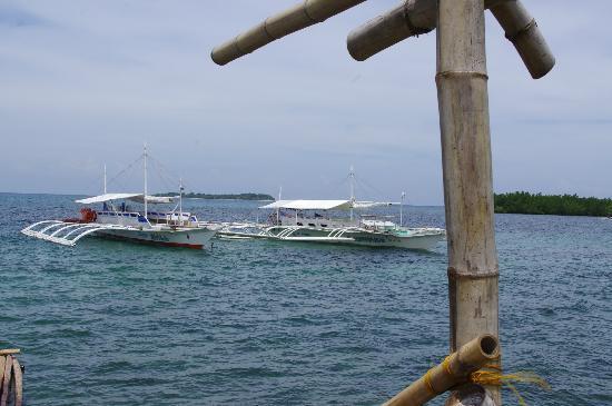 Bancas, Matalom, Southern Leyte for Canigao Island