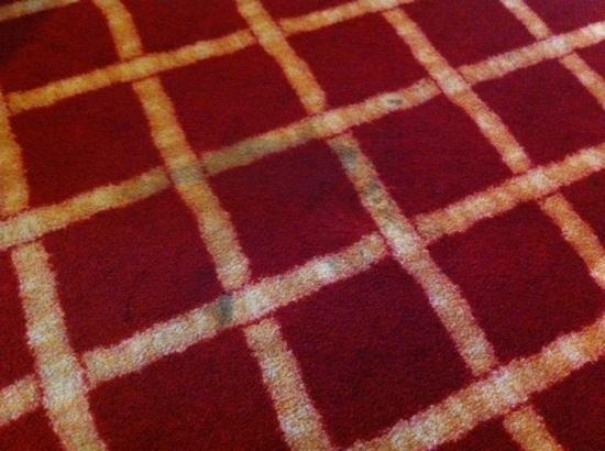Hotel Muller : moquette da pulire....