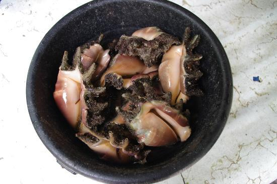 Unknown steamed shellfish, Canigao Island, Southern Leyte